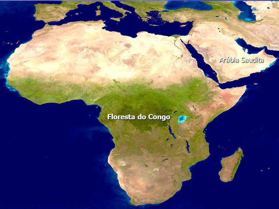 Floresta do Congo Arábia Saudita