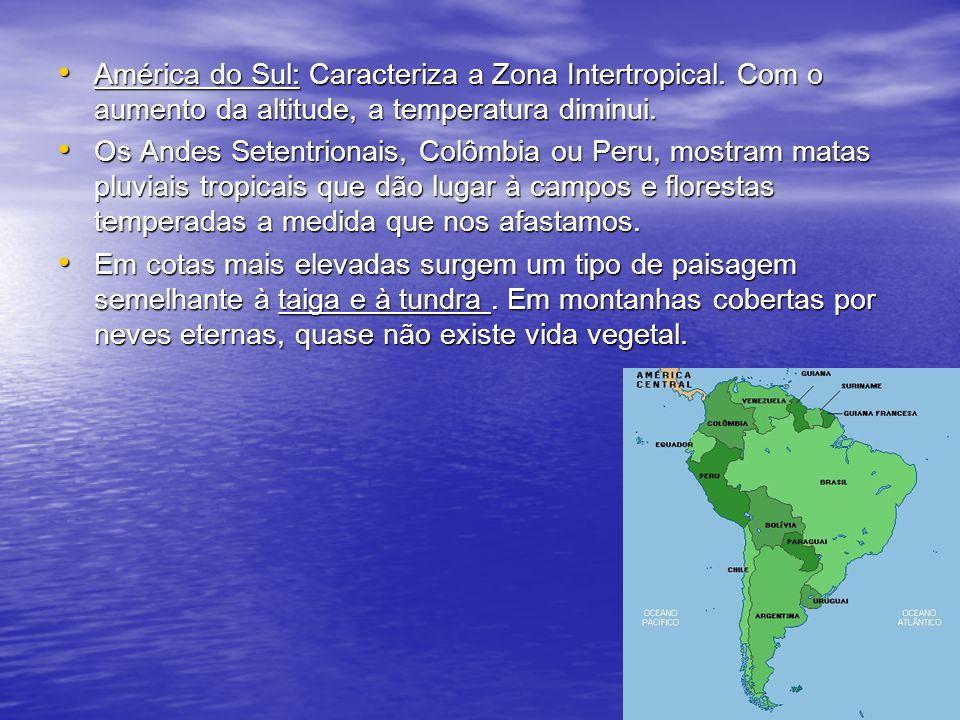 América do Sul: Caracteriza a Zona Intertropical. Com o aumento da altitude, a temperatura diminui. América do Sul: Caracteriza a Zona Intertropical.