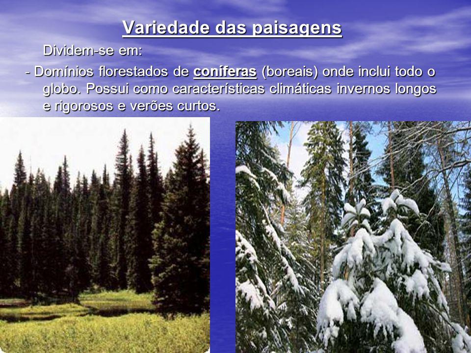 Variedade das paisagens Dividem-se em: - Domínios florestados de coníferas (boreais) onde inclui todo o globo. Possui como características climáticas