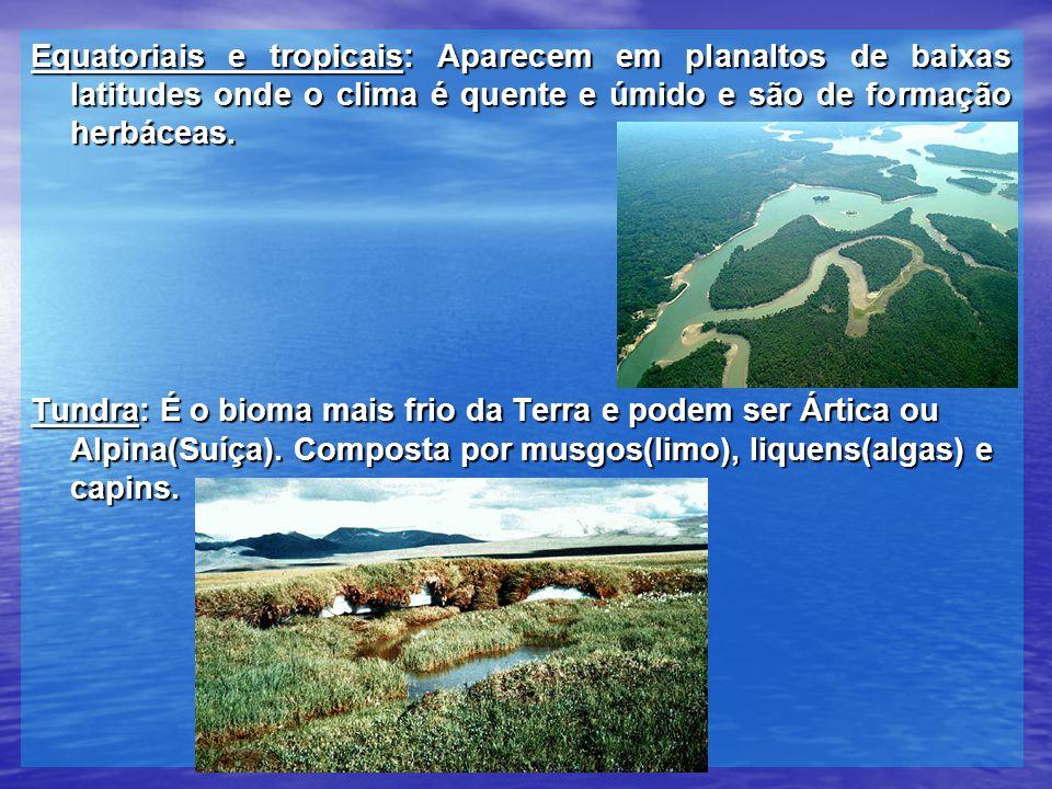 Equatoriais e tropicais: Aparecem em planaltos de baixas latitudes onde o clima é quente e úmido e são de formação herbáceas. Tundra: É o bioma mais f
