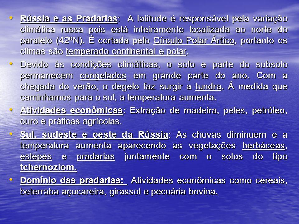 A ZONA INTERTROPICAL (Características) A ZONA INTERTROPICAL (Características) - Variedades de domínios naturais; - Cobertura vegetais.
