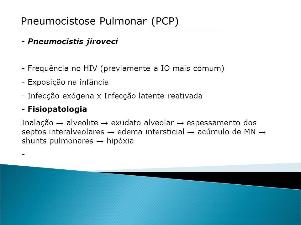 Pneumocistose Pulmonar (PCP) - Pneumocistis jiroveci - Frequência no HIV (previamente a IO mais comum) - Exposição na infância - Infecção exógena x In