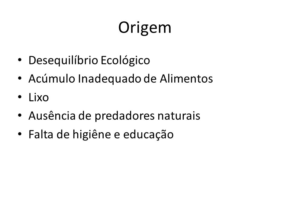 Origem Desequilíbrio Ecológico Acúmulo Inadequado de Alimentos Lixo Ausência de predadores naturais Falta de higiêne e educação
