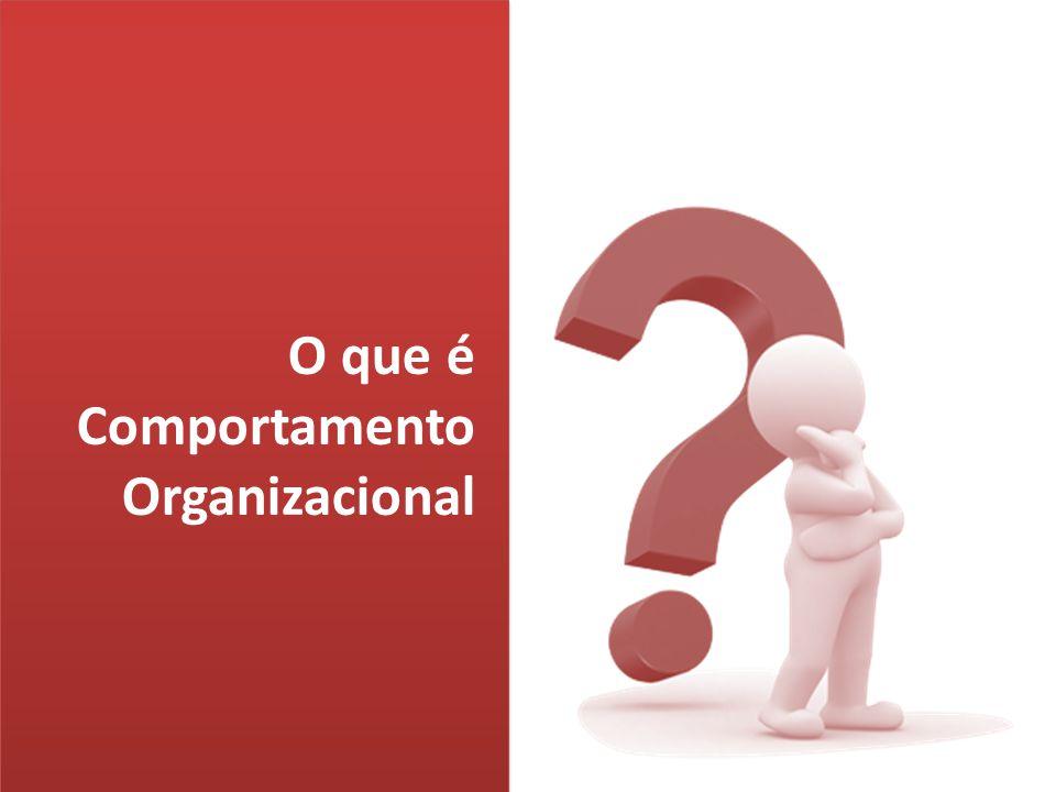 Universidade Federal de Alagoas Campus Arapiraca O que é Comportamento Organizacional.