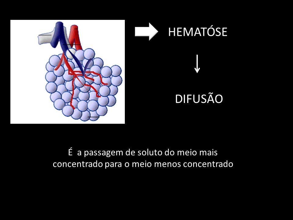 HEMATÓSE DIFUSÃO É a passagem de soluto do meio mais concentrado para o meio menos concentrado