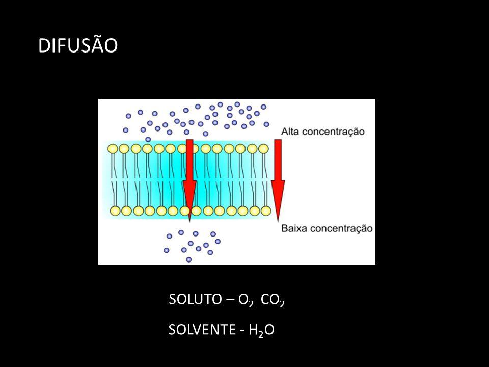 DIFUSÃO SOLUTO – O 2 CO 2 SOLVENTE - H 2 O