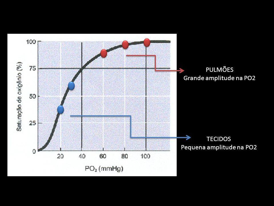PULMÕES Grande amplitude na PO2 TECIDOS Pequena amplitude na PO2