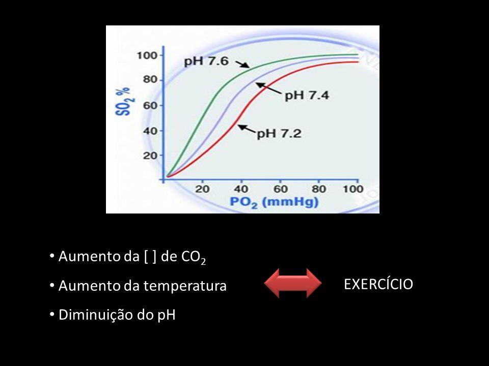 Aumento da [ ] de CO 2 Aumento da temperatura Diminuição do pH EXERCÍCIO