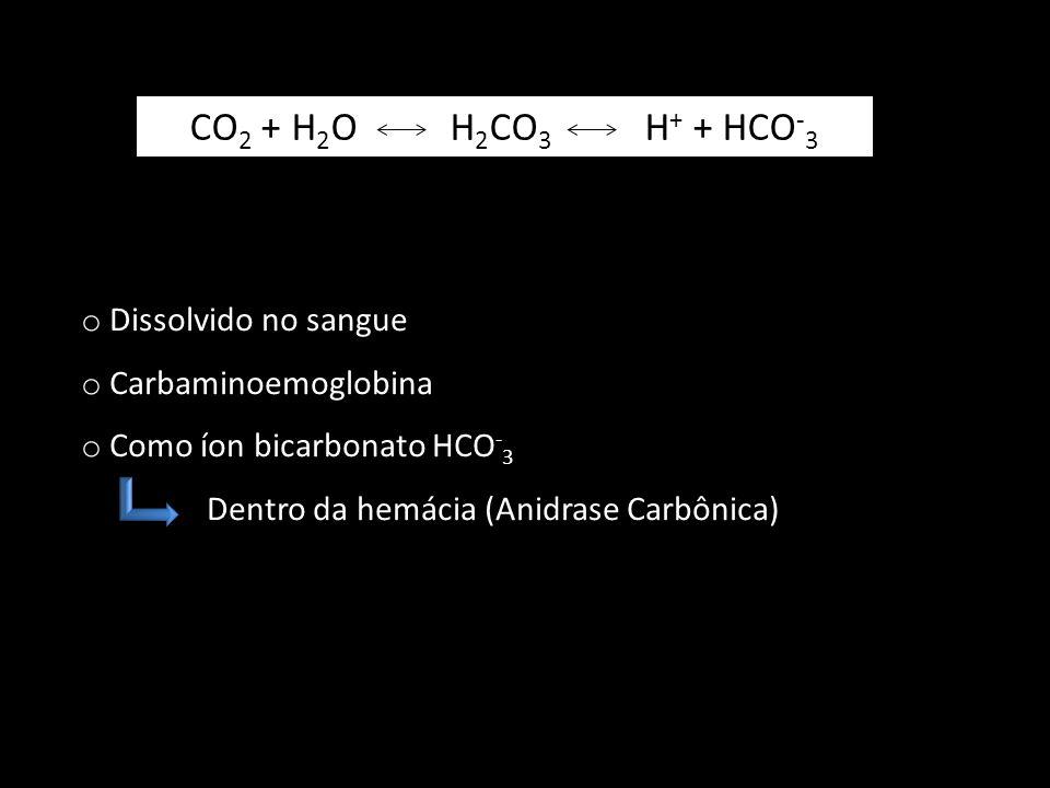CO 2 + H 2 O H 2 CO 3 H + + HCO - 3 o Dissolvido no sangue o Carbaminoemoglobina o Como íon bicarbonato HCO - 3 Dentro da hemácia (Anidrase Carbônica)