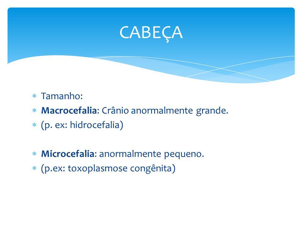 Tamanho: Macrocefalia: Crânio anormalmente grande. (p. ex: hidrocefalia) Microcefalia: anormalmente pequeno. (p.ex: toxoplasmose congênita) CABEÇA