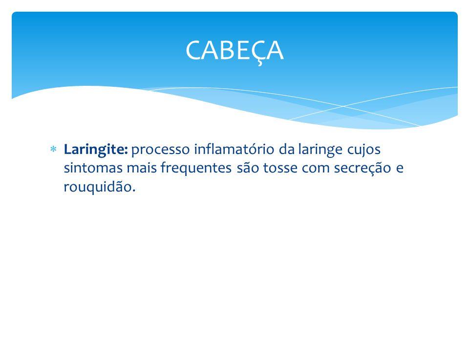 Laringite: processo inflamatório da laringe cujos sintomas mais frequentes são tosse com secreção e rouquidão. CABEÇA