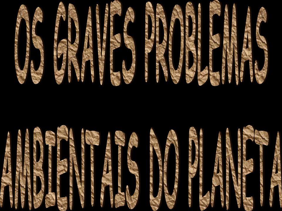 PROBLEMAS ECOLÓGICOS PRODUZIDOS PELA DEVASTAÇÃO DAS FLORESTAS Redução drástica do volume de água dos rios; Emissão desenfreada de CO 2, gás que tem sido responsável pelo aumento do efeito estufa; Redução da rica biodiversidade, já que o Brasil possui 15% a 20% das espécies vivas; Erosão de encostas.