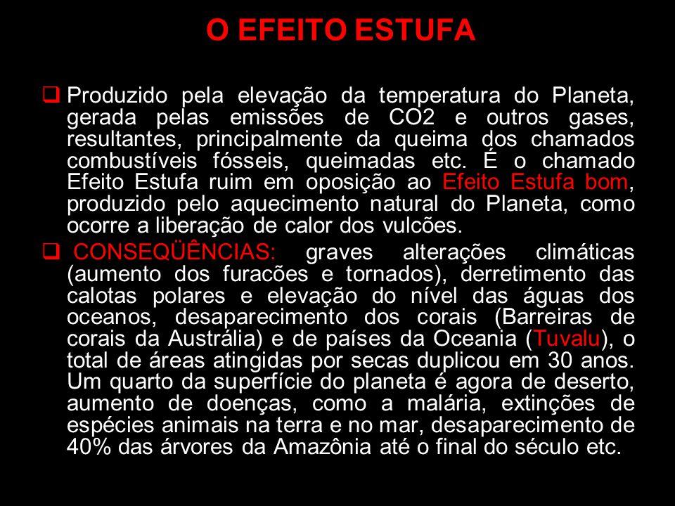 O EFEITO ESTUFA Produzido pela elevação da temperatura do Planeta, gerada pelas emissões de CO2 e outros gases, resultantes, principalmente da queima