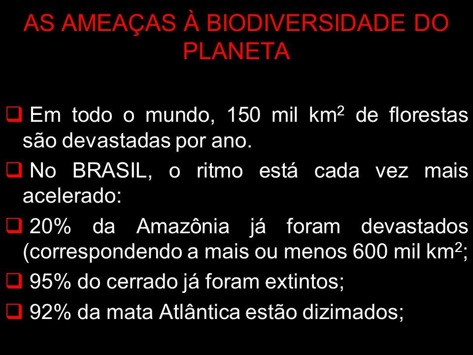 AS AMEAÇAS À BIODIVERSIDADE DO PLANETA Em todo o mundo, 150 mil km 2 de florestas são devastadas por ano. No BRASIL, o ritmo está cada vez mais aceler