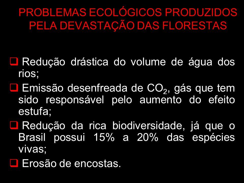 PROBLEMAS ECOLÓGICOS PRODUZIDOS PELA DEVASTAÇÃO DAS FLORESTAS Redução drástica do volume de água dos rios; Emissão desenfreada de CO 2, gás que tem si