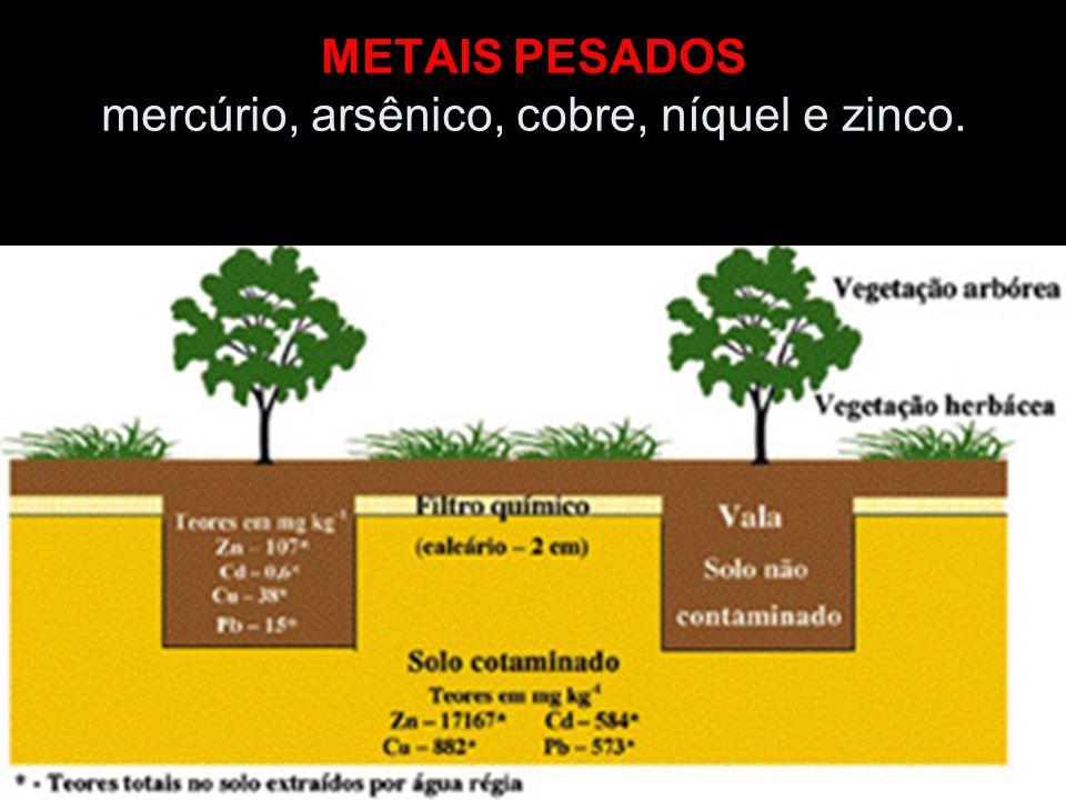 METAIS PESADOS mercúrio, arsênico, cobre, níquel e zinco.