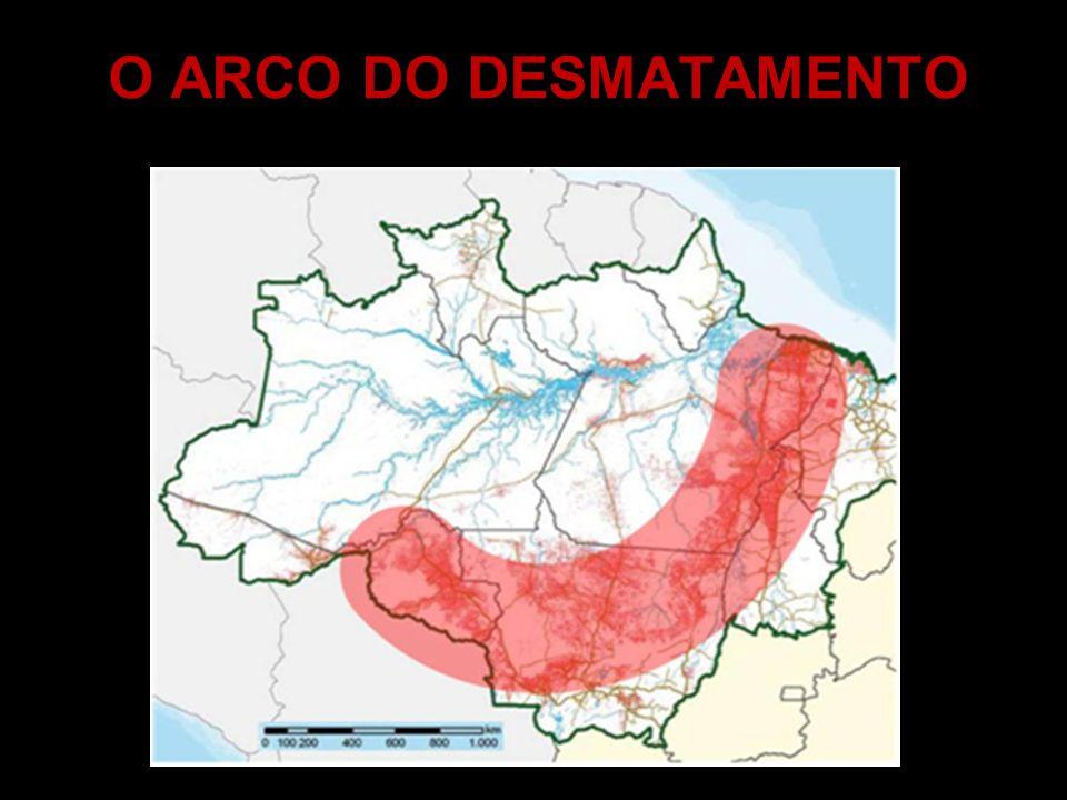 O ARCO DO DESMATAMENTO