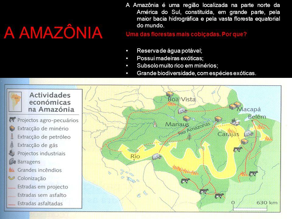 A AMAZÔNIA A Amazônia é uma região localizada na parte norte da América do Sul, constituída, em grande parte, pela maior bacia hidrográfica e pela vas