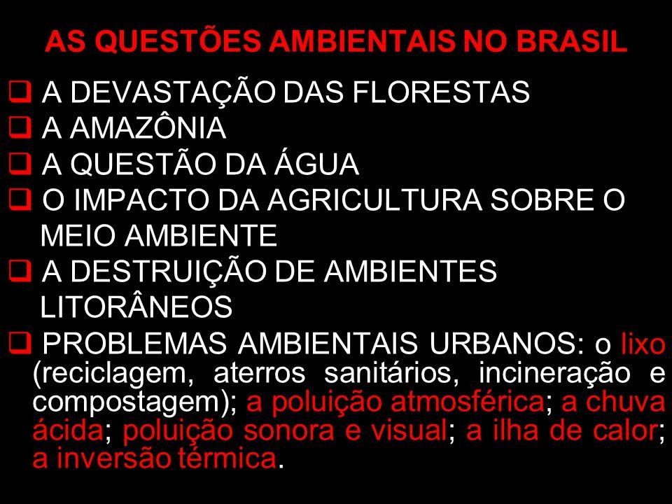 A DEVASTAÇÃO DAS FLORESTAS A AMAZÔNIA A QUESTÃO DA ÁGUA O IMPACTO DA AGRICULTURA SOBRE O MEIO AMBIENTE A DESTRUIÇÃO DE AMBIENTES LITORÂNEOS PROBLEMAS