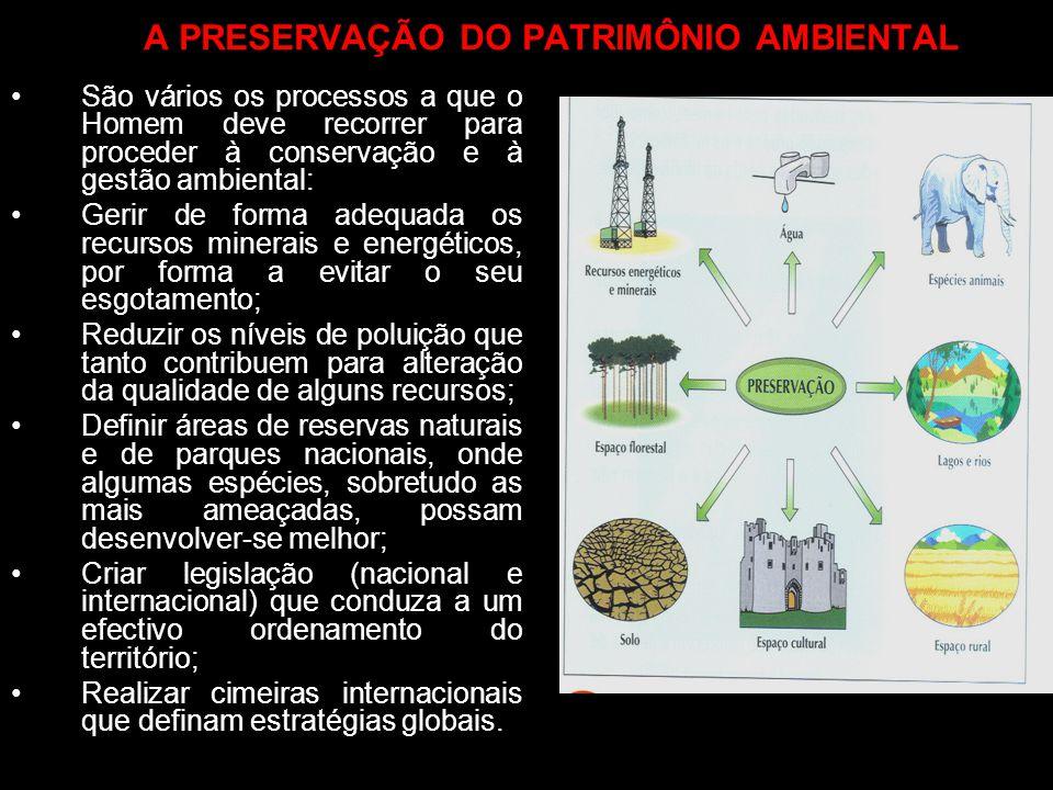 A PRESERVAÇÃO DO PATRIMÔNIO AMBIENTAL São vários os processos a que o Homem deve recorrer para proceder à conservação e à gestão ambiental: Gerir de f
