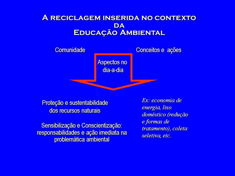 A reciclagem inserida no contexto da Educação Ambiental Comunidade Proteção e sustentabilidade dos recursos naturais Ex: economia de energia, lixo dom