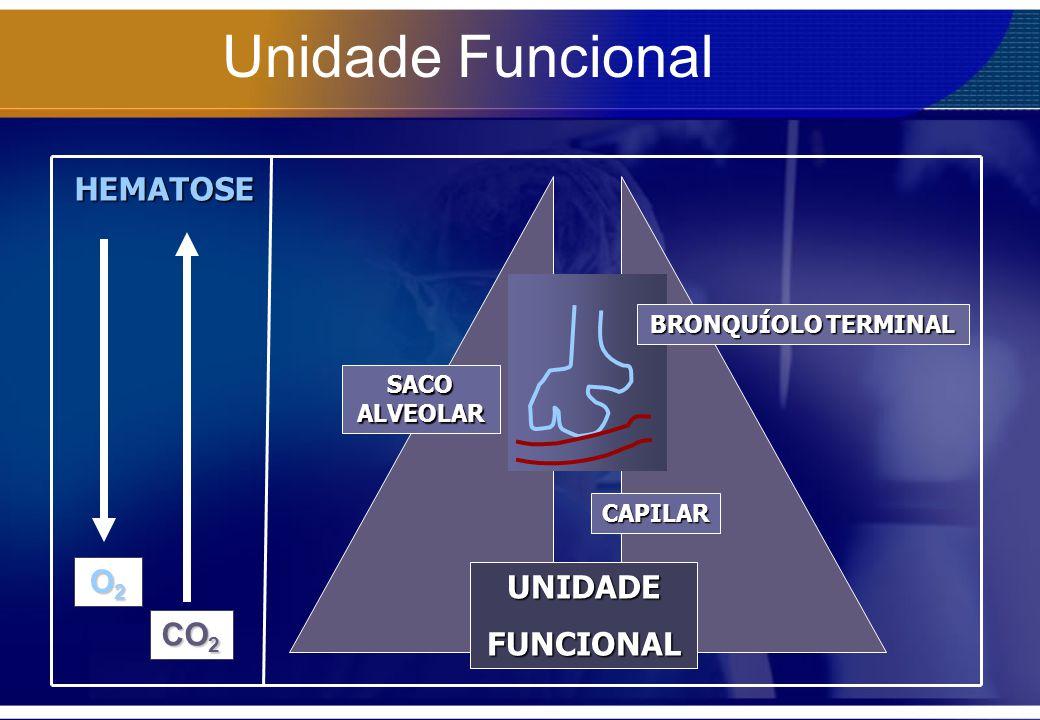 Unidade Funcional UNIDADEFUNCIONAL CAPILAR BRONQUÍOLO TERMINAL SACO ALVEOLAR HEMATOSE O2O2O2O2 CO 2