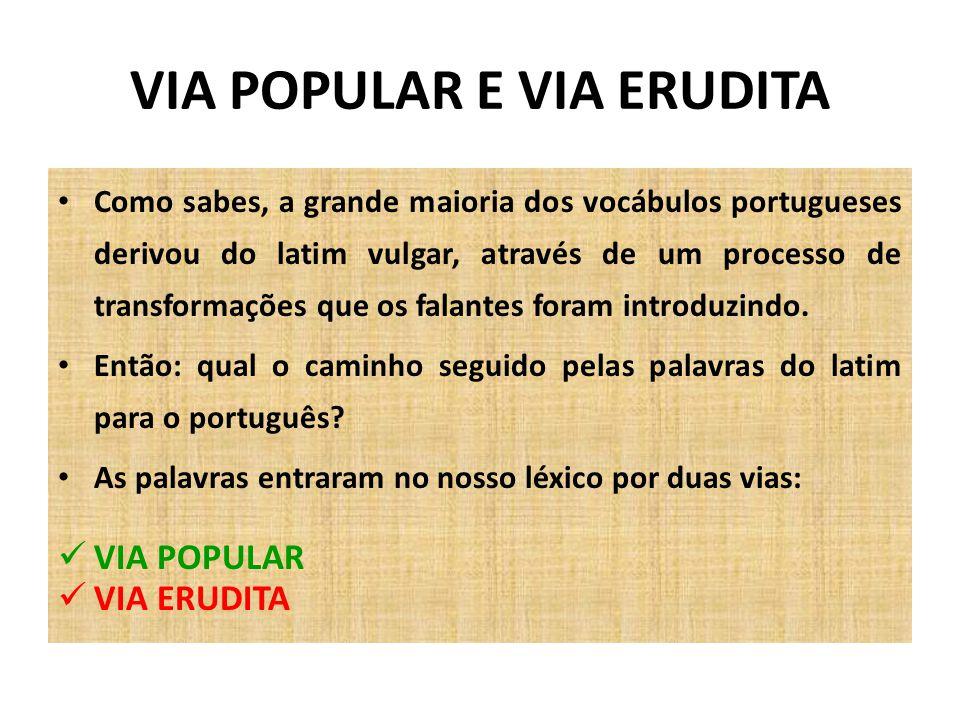 VIA POPULAR E VIA ERUDITA Como sabes, a grande maioria dos vocábulos portugueses derivou do latim vulgar, através de um processo de transformações que