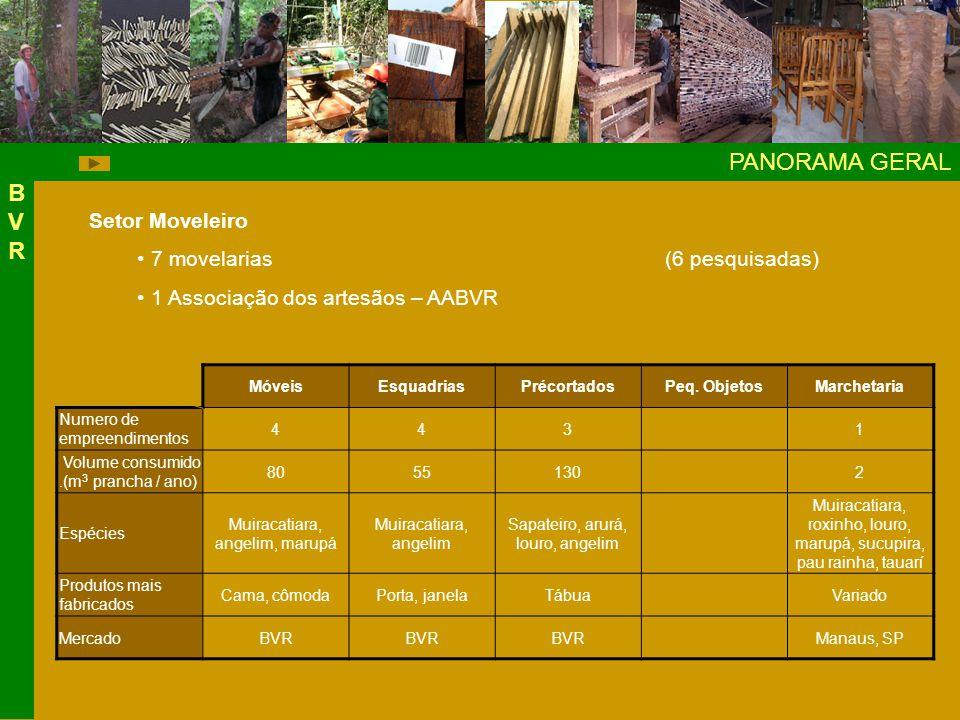 PANORAMA GERAL BVRBVR Setor Moveleiro 7 movelarias(6 pesquisadas) 1 Associação dos artesãos – AABVR MóveisEsquadriasPrécortadosPeq.
