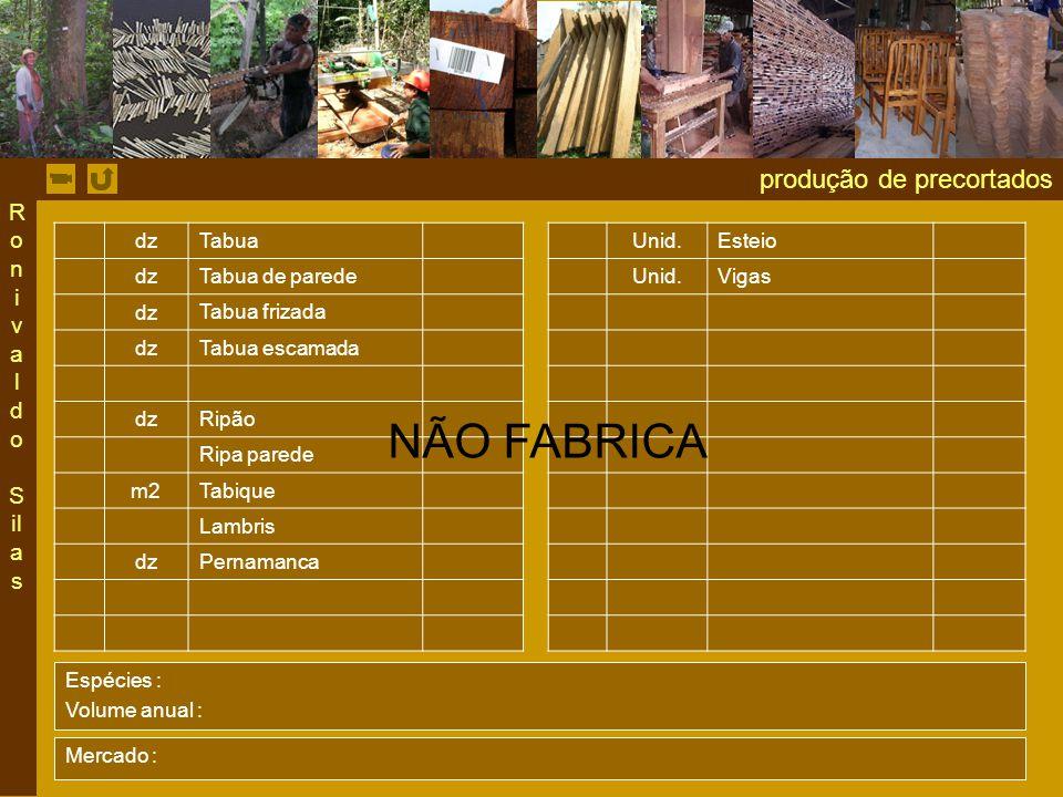 produção de precortados dz Tabua Unid.Esteio dz Tabua de parede Unid.