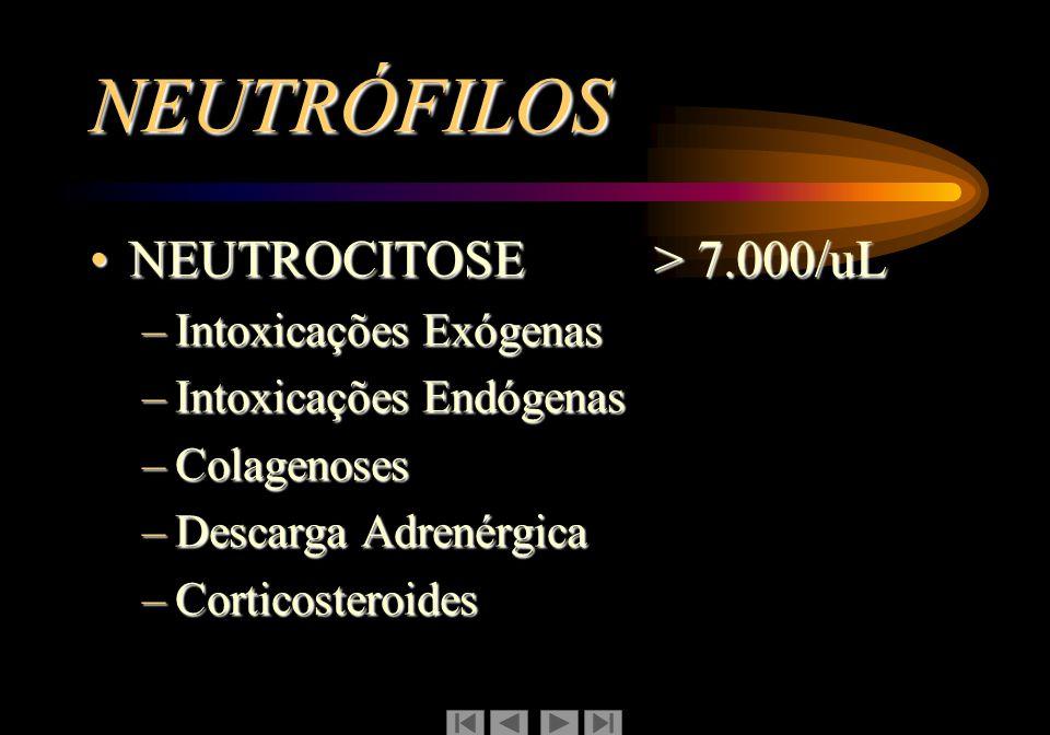 NEUTRÓFILOS NEUTROCITOPENIA < 1.500/uLNEUTROCITOPENIA < 1.500/uL –Neutrocitopenia crônica benigna –Neutrocitopenia cíclica –Medicamentos, produtos químicos, radiações –Mielodisplasias –Febre tifóide –Febre paratifóide –Infecções Intestinais por Salmonelas, Coli-invasora, Yersínia, Campilobacter –Viroses