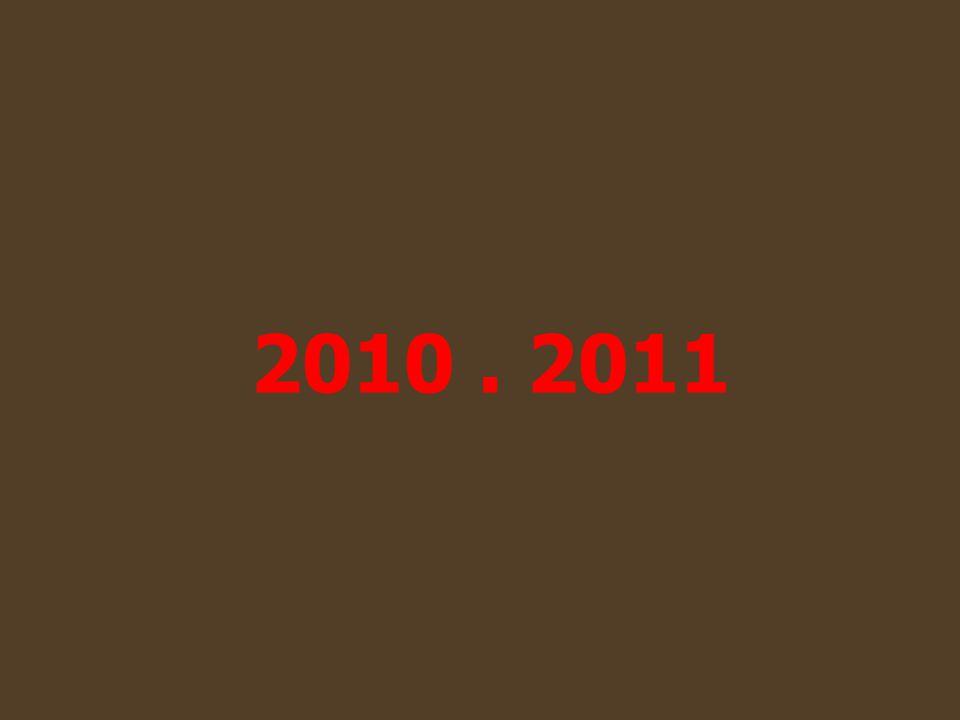 2010. 2011