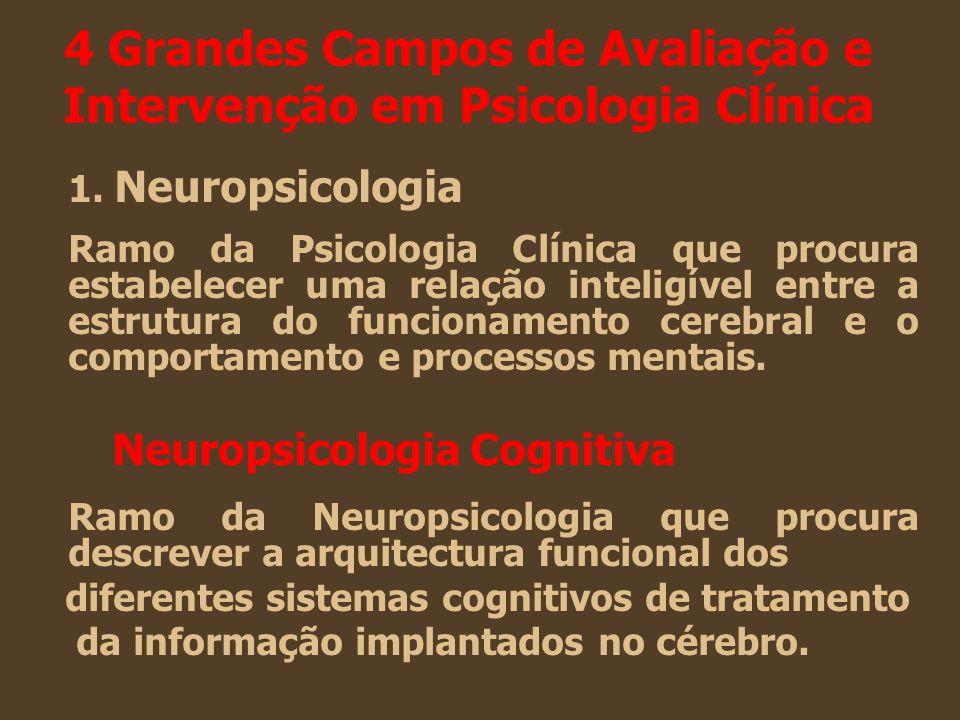 4 Grandes Campos de Avaliação e Intervenção em Psicologia Clínica 1. Neuropsicologia Ramo da Psicologia Clínica que procura estabelecer uma relação in