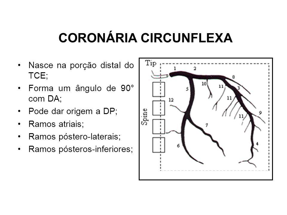CORONÁRIA CIRCUNFLEXA Nasce na porção distal do TCE; Forma um ângulo de 90° com DA; Pode dar origem a DP; Ramos atriais; Ramos póstero-laterais; Ramos