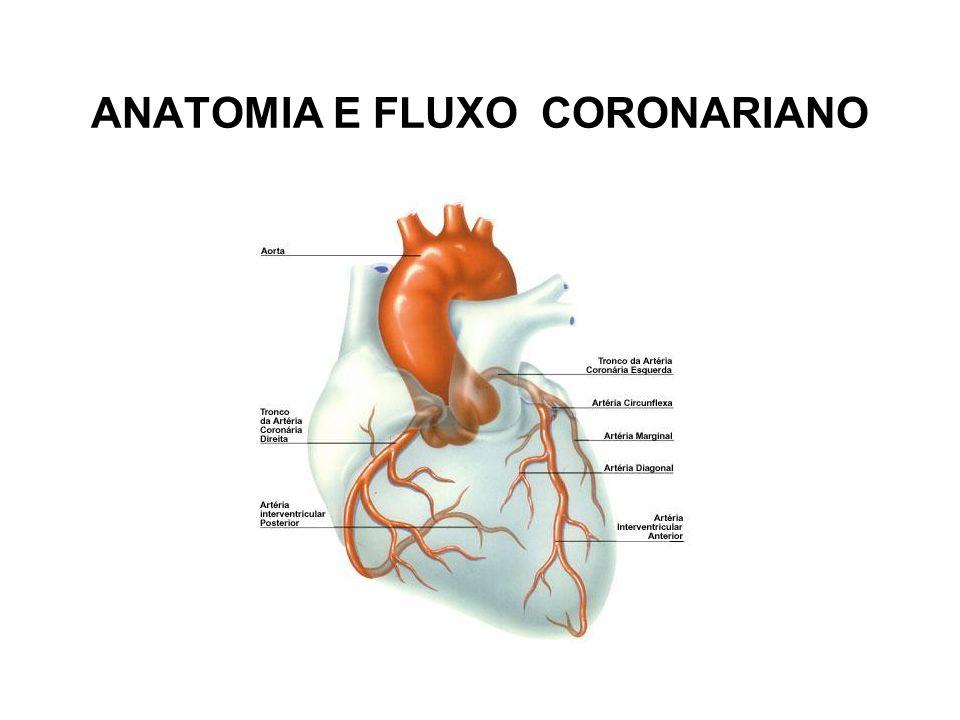 FIBRINOLÍTICO A utilização de agentes fibrinolíticos para a recanalização da artéria relacionada ao infarto em pacientes com IAM foi incorporada à prática clínica há mais de 25 anos.