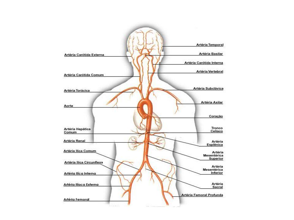 CAUSA DE MORTE EM ADULTOS (2000) Doença Coronária7.2 milhões Câncer6.3 Doença Cerebrovascular4.6 Infecções do Trato respiratório Inferior3.9 Tuberculose3.0 DPOC2.9 Diarréia (incluindo disenteria)2.5 Malária2.1 AIDS1.5 Hepatite B1.2 Datasus