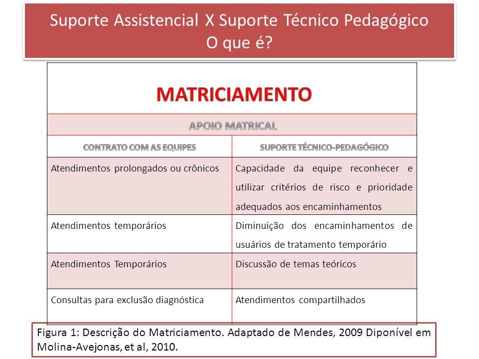 Suporte Assistencial X Suporte Técnico Pedagógico O que é? Figura 1: Descrição do Matriciamento. Adaptado de Mendes, 2009 Diponível em Molina-Avejonas