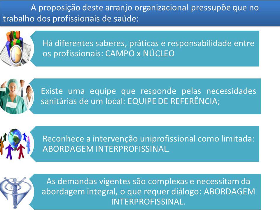 Há diferentes saberes, práticas e responsabilidade entre os profissionais: CAMPO x NÚCLEO Existe uma equipe que responde pelas necessidades sanitárias