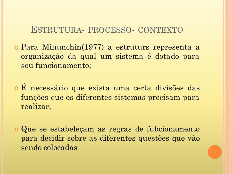 E STRUTURA - PROCESSO - CONTEXTO Para Minunchin(1977) a estruturs representa a organização da qual um sistema é dotado para seu funcionamento; É neces