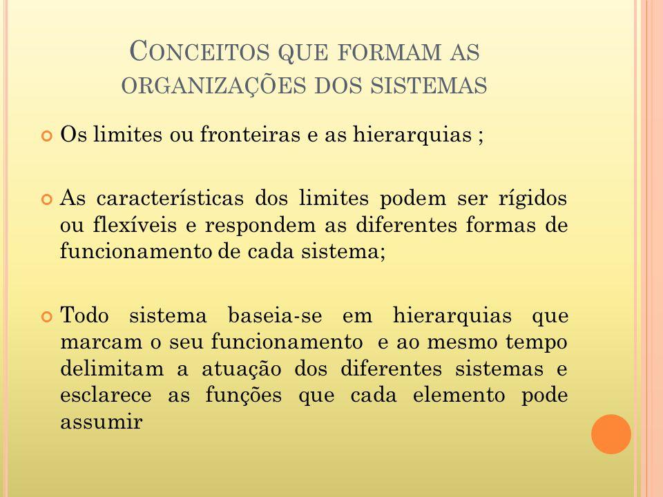 C ONCEITOS QUE FORMAM AS ORGANIZAÇÕES DOS SISTEMAS Os limites ou fronteiras e as hierarquias ; As características dos limites podem ser rígidos ou fle