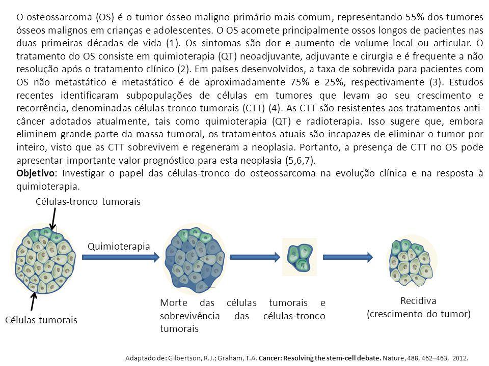 Células-tronco tumorais Células tumorais Quimioterapia Morte das células tumorais e sobrevivência das células-tronco tumorais Recidiva (crescimento do tumor) Adaptado de: Gilbertson, R.J.; Graham, T.A.