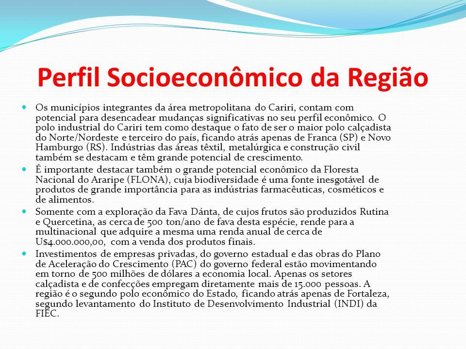 Perfil Socioeconômico da Região Os municípios integrantes da área metropolitana do Cariri, contam com potencial para desencadear mudanças significativ