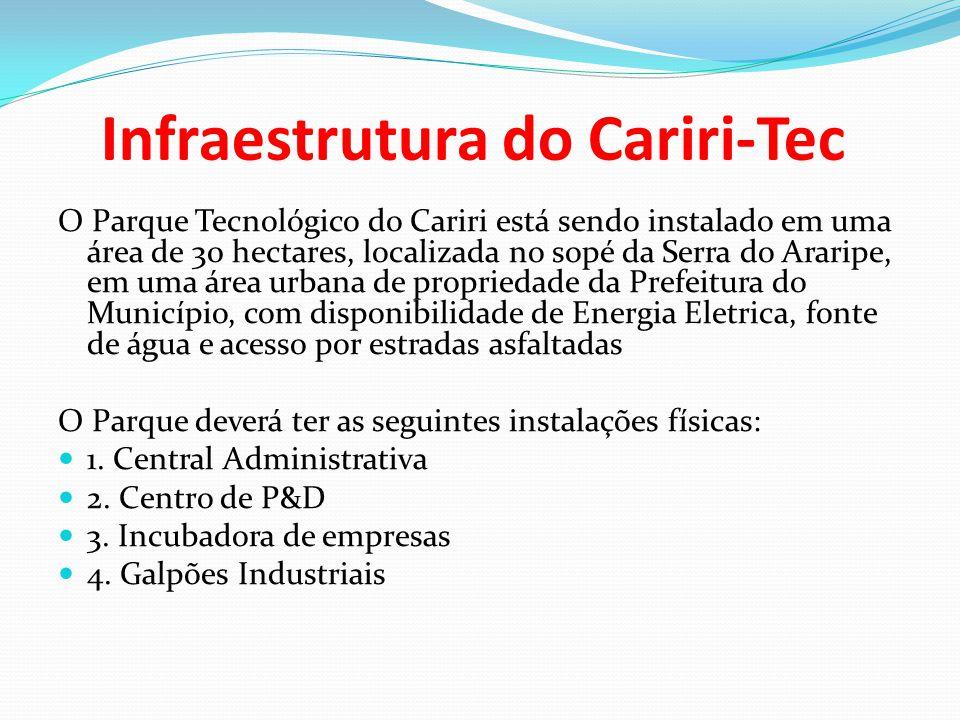 Infraestrutura do Cariri-Tec O Parque Tecnológico do Cariri está sendo instalado em uma área de 30 hectares, localizada no sopé da Serra do Araripe, e