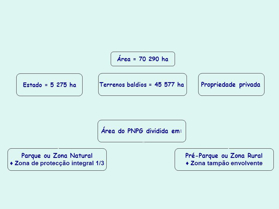 Parque Nacional da Peneda-Gerês Área = 70 290 ha Estado = 5 275 ha Terrenos baldios = 45 577 ha Propriedade privada Área do PNPG dividida em: Parque o