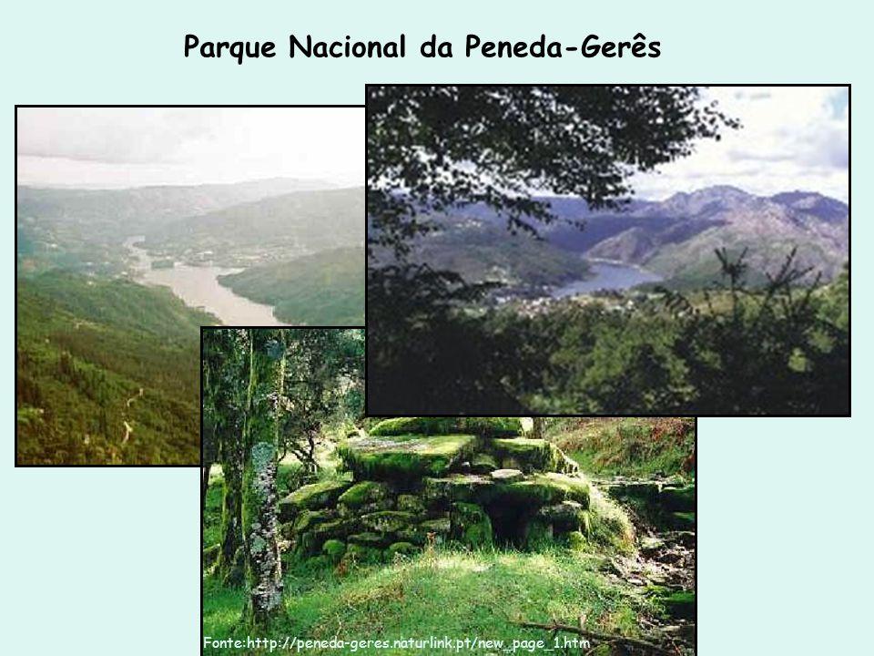 Parque Nacional da Peneda-Gerês Fonte:http://peneda-geres.naturlink.pt/new_page_1.htm