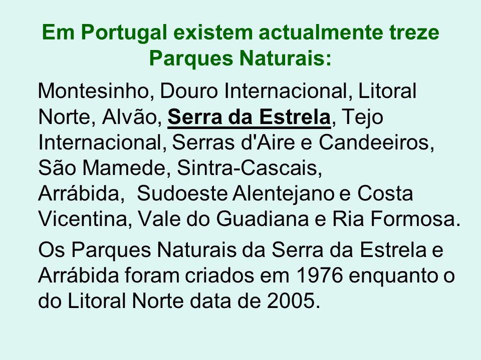 Em Portugal existem actualmente treze Parques Naturais: Montesinho, Douro Internacional, Litoral Norte, Alvão, Serra da Estrela, Tejo Internacional, S