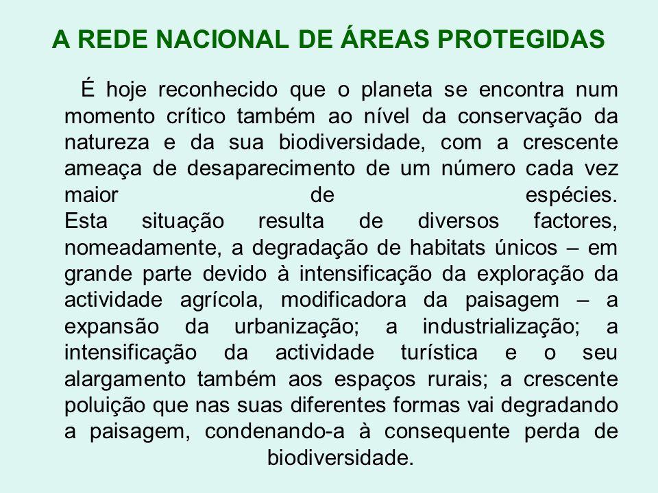 A REDE NACIONAL DE ÁREAS PROTEGIDAS É hoje reconhecido que o planeta se encontra num momento crítico também ao nível da conservação da natureza e da s