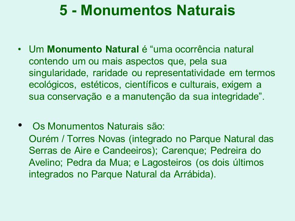 5 - Monumentos Naturais Um Monumento Natural é uma ocorrência natural contendo um ou mais aspectos que, pela sua singularidade, raridade ou representa