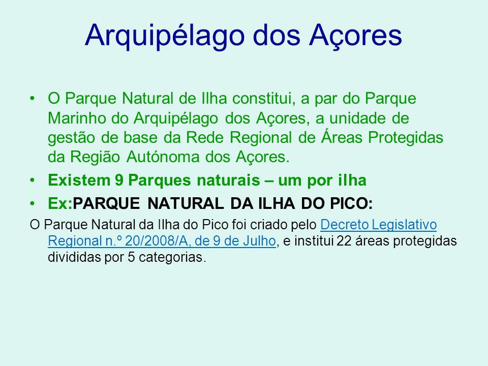Arquipélago dos Açores O Parque Natural de Ilha constitui, a par do Parque Marinho do Arquipélago dos Açores, a unidade de gestão de base da Rede Regi