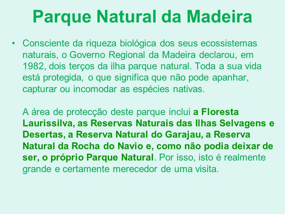 Parque Natural da Madeira Consciente da riqueza biológica dos seus ecossistemas naturais, o Governo Regional da Madeira declarou, em 1982, dois terços