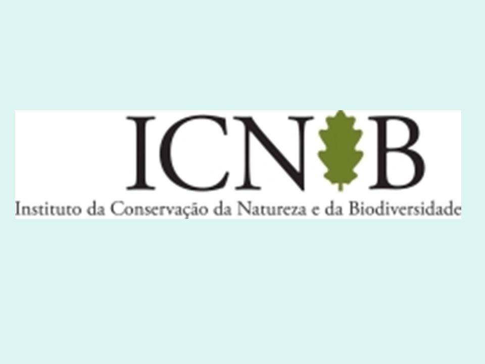 Áreas Protegidas Decreto -Lei n.º 19/93 de 23 de Janeiro Princípios gerais 1A conservação da Natureza, a protecção dos espaços naturais e das paisagem, a preservação das espécies da fauna e da flora e dos seus habitats naturais a manutenção dos equilíbrios ecológicos e a protecção dos recursos naturais contra todas as formas de degradação constituem objectivos de interesse público, a prosseguir mediante a implementação e regulamentação de um sistema nacional de áreas protegidas.